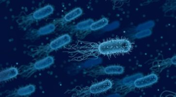 Роды в США. Вакцинация и иммунитет – как это работает? Часть 1.