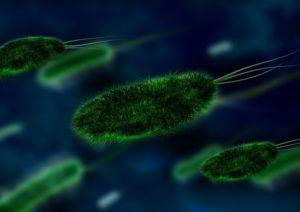 Роды в Америке. Вакцинация и иммунитет. Стоит ли прививаться? Часть 2.